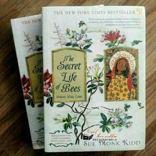 Novel The Secret Life of Bee's