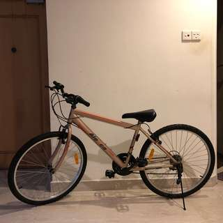 Bike (Aleoca)