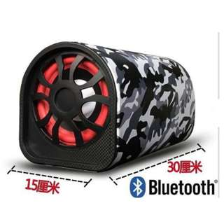 DC12-24v AC220v 5inch BLUETOOTH FM USB car/home speaker