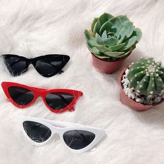 SUNNIES FOR ONLY 150!!!!