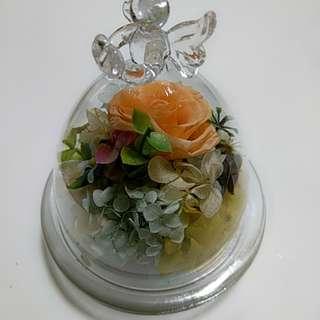 永生花 保鮮花罩擺設