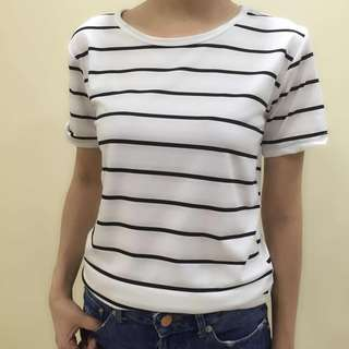 Women's Stripe T Shirt