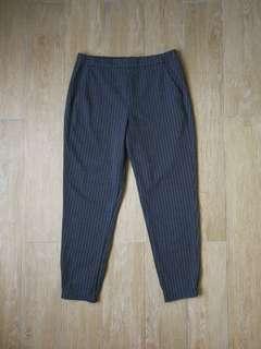 Uniqlo Jogger Pant Dark Grey Pinstripe