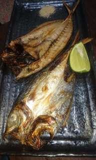 竹夾魚一夜干
