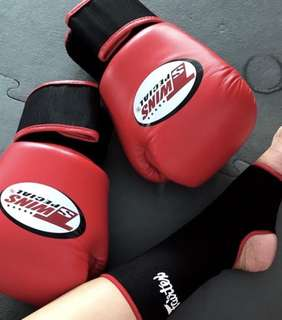 Original Twins Boxing Gloves Red
