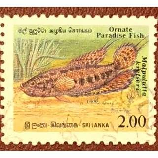 斯里蘭卡魚類紀念郵票