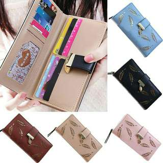 DOMPET HOLLOW