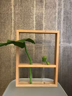 Wooden Frame and Glass Vase