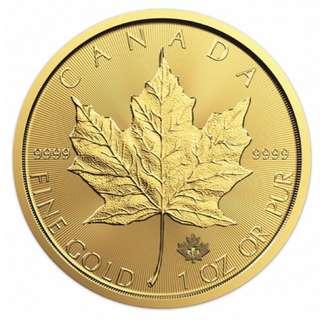 Gold Maple coin 1 Oz 2018