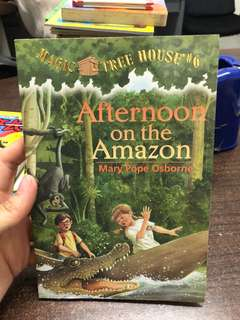 Afternoon on the Amazon Storybook