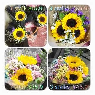 Huamama Sun Flower