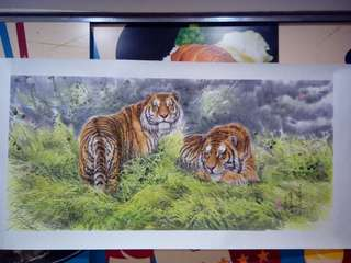 朝鲜彩墨画,虎。朱革画。180x90cm