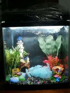 JEBO R331 Aquarium Set (Acrylic Glass)