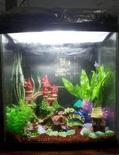JEBO R338 Aquarium Set (Acrylic Glass)