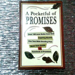 A Pocketful of PROMISES