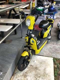 48v escooter for sale