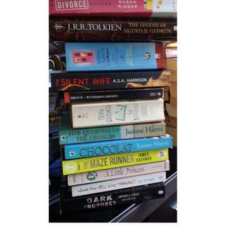 Young Adult/Adult Fiction Books/Storybooks