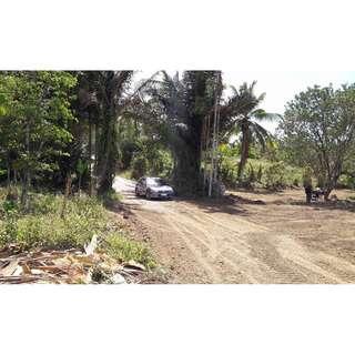 Banay Banay Farm near Balite Falls Resort