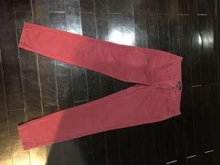 Red women Pants