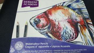 Derwent Academy water colour pencils