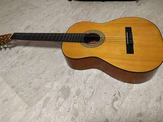 Guitar (Congress C100)
