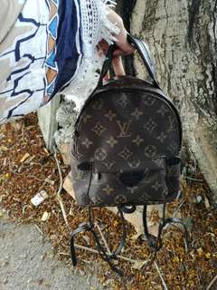 Authentic Lv Mini Backpack