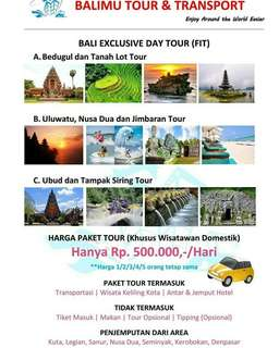 Bali Honeymoon Tour Package/Daily Tour Package
