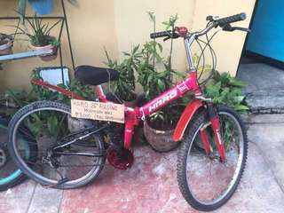 Haro DX Foldable Bike