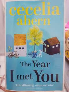 The Year I Met You by Cecelia Ahern