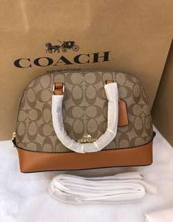 Coach Handbag Premium Mirror Copy