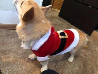 Baju Natal Anjing dan Kucing Christmas