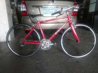 Colnago Hybrid Bike