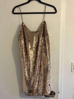 Honey Sequin Large Dress