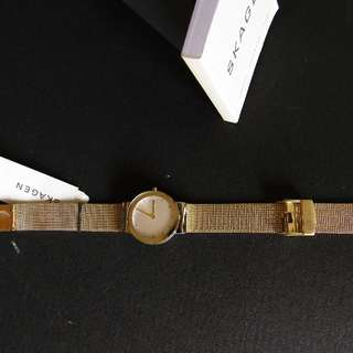 Skagen Gold Tone 23mm Watch