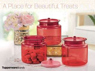 $40 Tupperware Counterpart Set