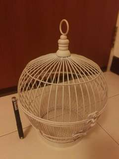 Bird cage display, great for wedding