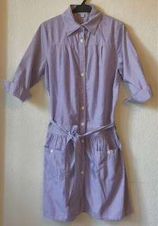 Steven Alan Shirt Waist Dress