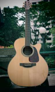 Acoustic Guitar Takamine G Series