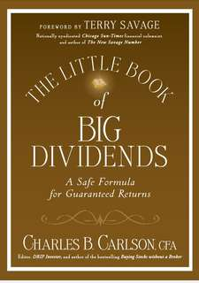 The Little Book of Big Dividends (ebook)
