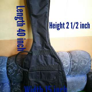 Guitar Case From Japan For Les Paul and Alike
