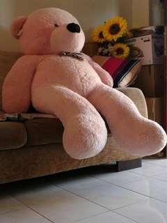 Giant Teddy Bear Soft Toy
