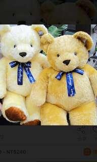 🚚 120cm超大泰迪熊(左邊淺色)