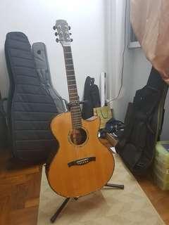 Maestro Singa Acoustic Guitar