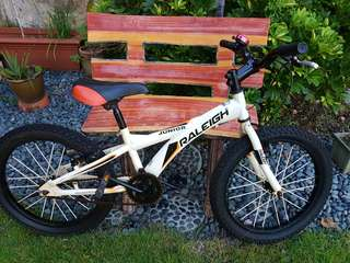 "Raleigh Junior 20"" Mountain Bike or BMX Bicycle"