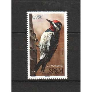 FRENCH ST. PIERRE 2018 BIRDS SPOTTED WOODPECKER COMP. SET OF 1 STAMP IN MINT MNH UNUSED CONDITION