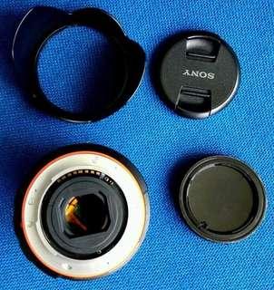 Sony DT 18/135