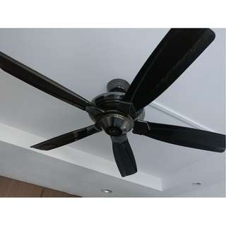 Crestar Ceiling Fans to clear (used)