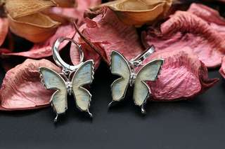 Navia Jewelry Real Butterfly Wing Danis danis Silver Earrings Korea
