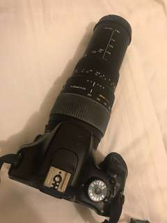 Canon 550D with Sigma 70-300mm lens