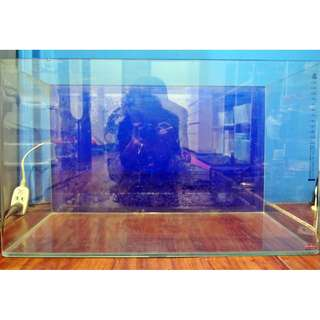 🚚 Mr.Aqua 小彎角ㄇ型超白缸 60*30*36cm